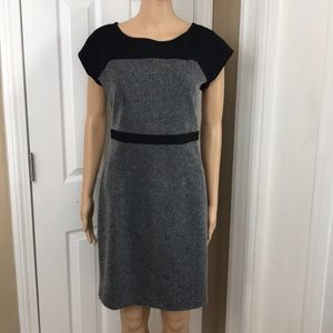 NWT Loft office wear Ponte dress Sz 4